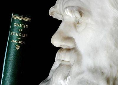 Chùm ảnh: Darwin, 200 năm nhìn lại - 9