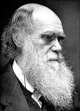 Chùm ảnh: Darwin, 200 năm nhìn lại - 1