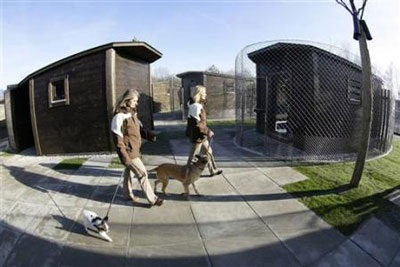 Chùm ảnh: Khách sạn hạng sang cho chó đầu tiên trên thế giới - 10