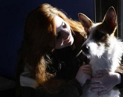 Chùm ảnh: Khách sạn hạng sang cho chó đầu tiên trên thế giới - 3