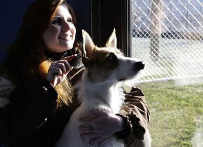 Chùm ảnh: Khách sạn hạng sang cho chó đầu tiên trên thế giới - 7