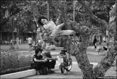 Phóng viên ảnh về chiến tranh Việt Nam: Cuộc đời qua lăng kính - 12