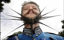 Chùm ảnh những bộ râu độc đáo nhất thế giới - 4