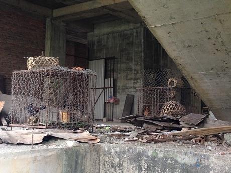 Tầng một của chung cư 83 Ngọc Hồi biến thành nơi để nuôi gà.