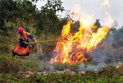 Thiếu đất sản xuất, bà con quay sang đốt rừng làm nương, rẫy.