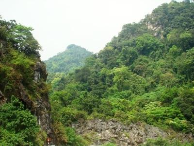 Vườn Quốc gia Phong Nha - Kẻ Bàng, nơi lâm tặc tìm thấy 2 cây sưa