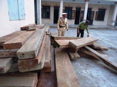 Số gỗ lậu dã được giao lại cho Hạt Kiểm lâm huyện Quảng Ninh tiếp tục điều tra, xử lí