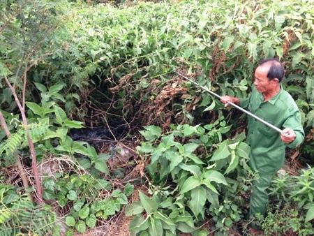 Ông Nguyễn Khắc Can chỉ đường đi của nước thải y tế Bệnh viện Đa khoa huyện Lệ Thủy