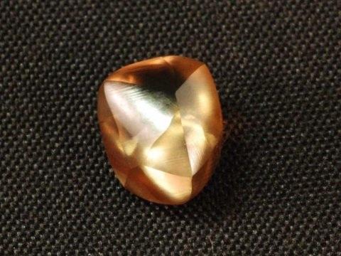 Một viên kim cương được tìm thấy tại Công viên Crater of Diamonds vào hồi tháng 7 vừa qua