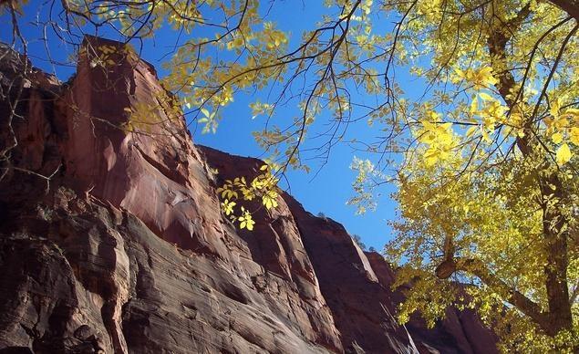 Công viên quốc gia Zion, tiểu bang Utah
