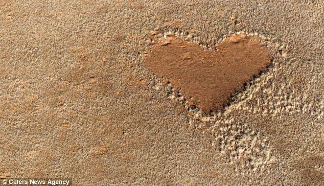 """""""Trái tim"""" trên nền đụn cát thuộc vùng Sossusvlei, cộng hòa Namibia, chụp tháng 5, 2012"""
