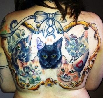 Hình ảnh 5 chú mèo đã chết
