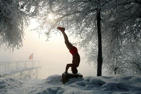 Trồng cây chuối trên băng tuyết cũng là sở trường của ông