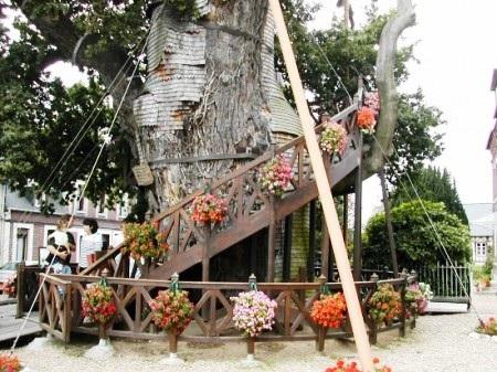 Nhà thờ độc đáo trên cây sồi nghìn tuổi