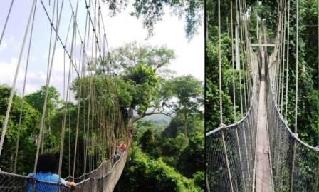 10 cây cầu đáng sợ nhất thế giới