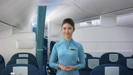 Áo dài màu xanh lam dành cho tiếp viên phục vụ hành khách hạng thường