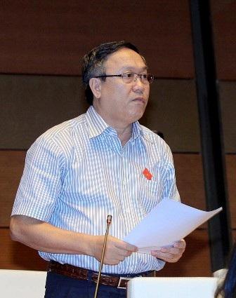 Đại biểu Đỗ Ngọc Niễn - đoàn Bình Thuận (ảnh: Ngọc Châu)