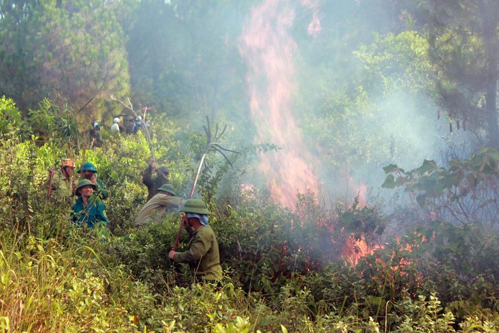 Gần 700 người của 2 huyện đã được huy động để đến dập lửa cứu rừng.