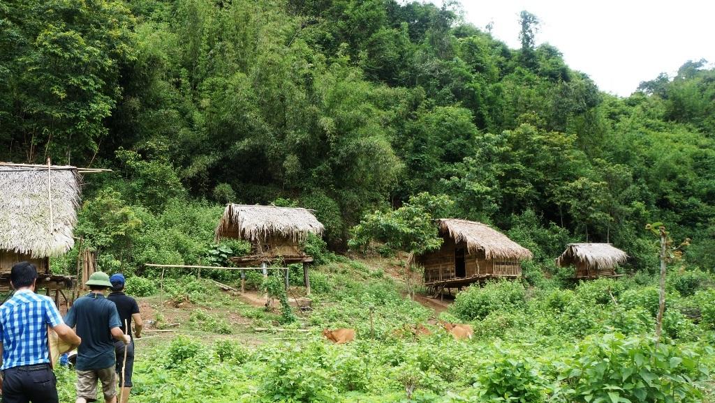 Khu vực nhà lán của gia đình Lo Văn Thọ - nơi xảy ra thảm án và cơ quan điều tra có mặt điều tra.