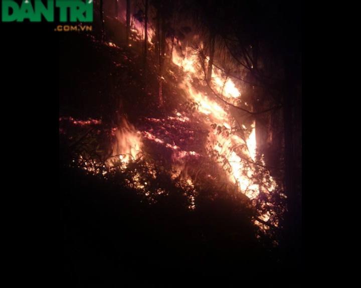 Ngọn lửa bắt đầu bùng cháy dữ dội.