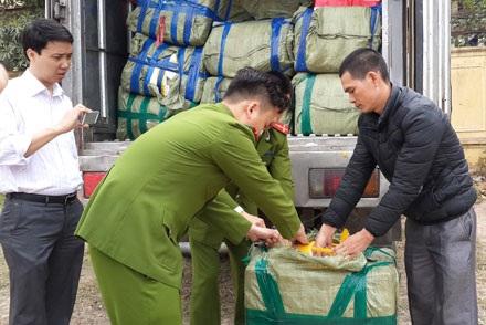 Bắt giữ 6 tấn hải sản tuồn từ Trung Quốc vào Việt Nam tiêu thụ
