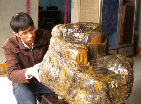 Kéo nhau đi xem gốc cây hóa thạch hàng ngàn năm tuổi - 2