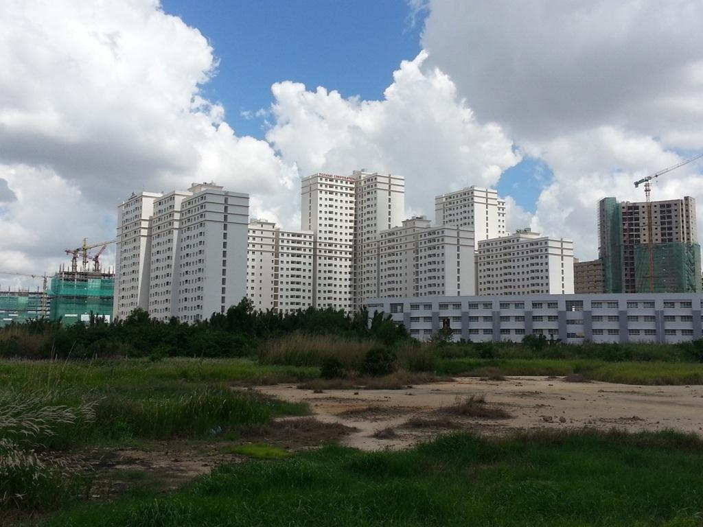 Thị trường căn hộ dành cho người mua để ở được dự báo sẽ chạy tốt trong thời gian tới