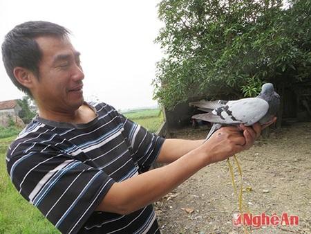 Anh Thắm với chim đưa thư có chữ lạ vừa bắt được