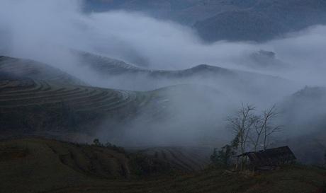 Ruộng bậc thang trong sương mù.