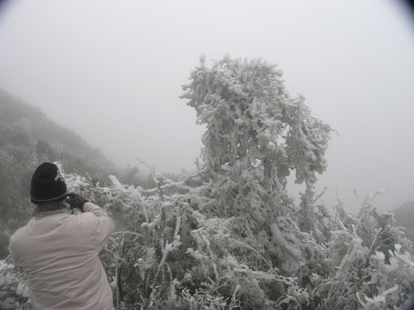 Băng tuyết lại xuất hiện trên núi cao Sa Pa