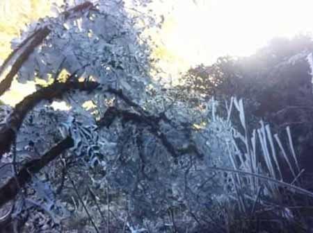 Băng tuyết phủ trắng đường lên đỉnh Nóc nhà Đông Dương