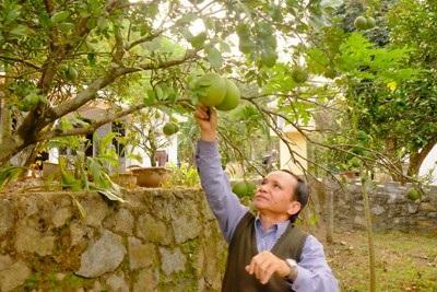 Già Alăng Cần bên vườn keo của gia đình. Ảnh: VGP/Lưu Hương