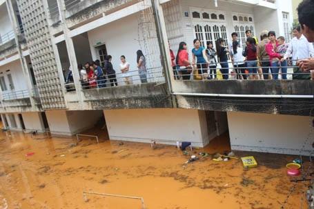 Sinh viên nháo nhác cứu tài sản