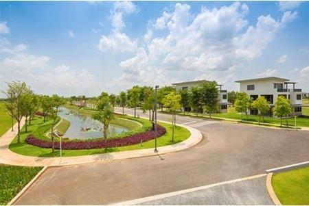Cảnh quang một phần trong công viên Đại Phước Lotus