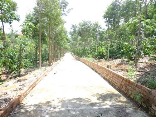 Đường bê tông dẫn vào nhà ông Minh