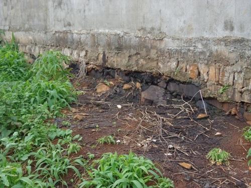 Nước tải của công ty chảy ra ngấm vào đất của người dân