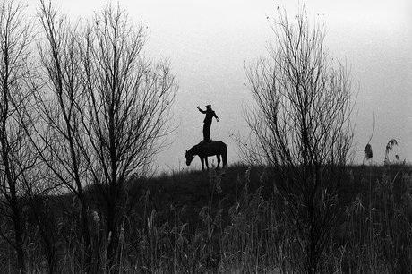 Ảnh chụp một người đàn ông đứng trên yên ngựa tại khu vực Rostov, Nga vào tháng 10/2010. (Ảnh: