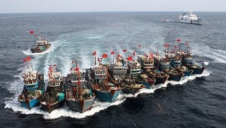 Lượng tàu Trung Quốc đánh bắt cá trái phép tại châu Phi tăng vọt trong những năm qua. (Ảnh: