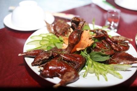 Các món ăn được chế biến từ chim trời