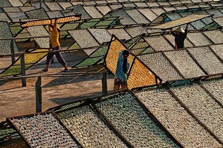 """""""Phơi cá khô"""" – Trương Minh Điền đoạt giải nhì cuộc thi ảnh CGAP 2011"""