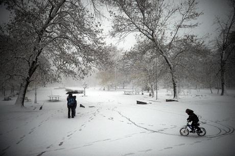 Bulgaria: Dù mặt đường đã phủ tuyết rất trơn nhưng cậu bé vẫn say sưa đạp xe trong công viên.
