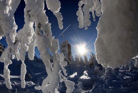 Đức: Mặt trời vẫn chiếu sáng nhưng tuyết đã kịp bọc lấy tất cả các cành cây ngọn cỏ.