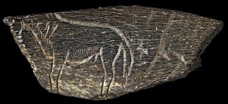 Một mảnh xương động vật khắc hình ngựa.