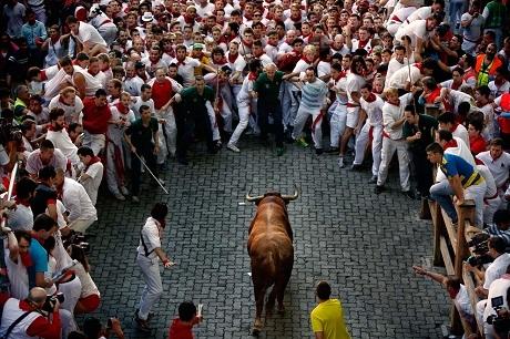 Thử cảm giác mạnh với lễ hội đấu bò tót