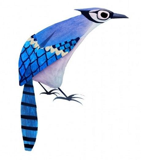 Ó tai, một loài chim săn mồi thuộc họ chim ưng.