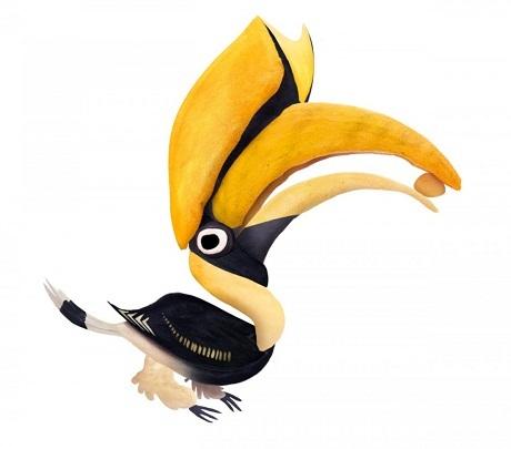 Một chú chim cắt.