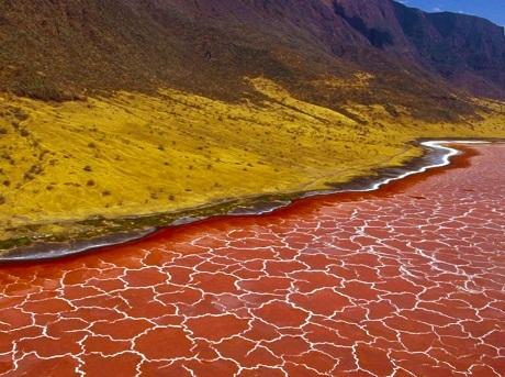 Màu nước hồ Natron
