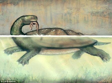 Rùa khổng lồ ăn thịt cá sấu sống trên Trái Đất 60 triệu năm trước.