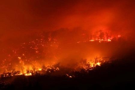 Ngày 4/1: Một trận cháy rừng lớn xảy ra ở đảo Tasmania, Úc.