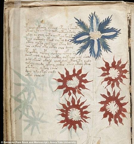 Giáo sư Bax cũng giải mã được một từ dùng để chỉ chòm sao Nhân Mã.